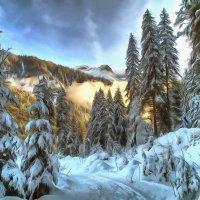зима :: Владимир Беляев ( GusLjar )