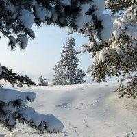 Окно в зимнюю сказку :: Sergey Ch