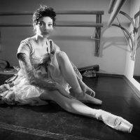 Балерина :: evgeny timosh