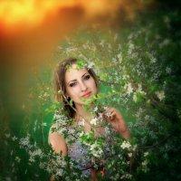 Весна-краса. :: Юлия Журавлёва