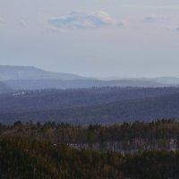 Лесные дали :: Татьяна Соловьева