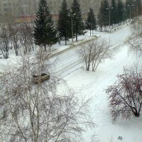Прошёл снег . :: Мила Бовкун
