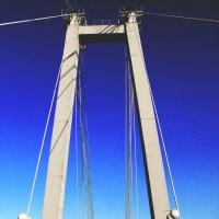 пешеходный мост на остров Татышев, г.Красноярск. :: Катя Медведева