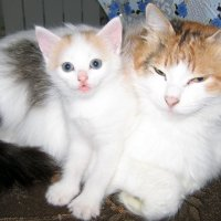 Мама с дочкой :: Евгений В