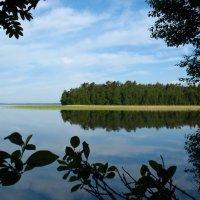 озеро отрадное :: геннадий щербак