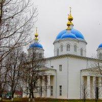 Ново-Благовещенский собор г.Мещовск :: Виктор