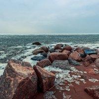 Финский залив, Питербург :: Алина Репко