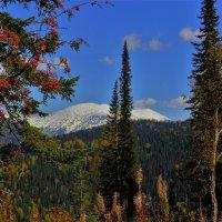 Заглянула зима в осень :: Сергей Чиняев