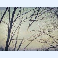 Утро, нежностью бездонное... :: Елена