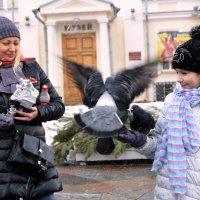 Любовь и голуби... :: Vladimir Semenchukov