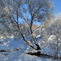 Зимний пейзаж в марте :: Милешкин Владимир Алексеевич