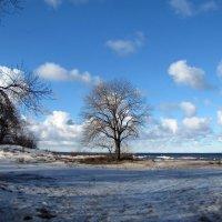 Нарва-Йыэсуу, Эстония, март :: veera (veerra)