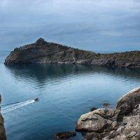 Новый Свет, Крым :: Марина