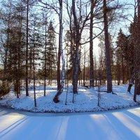 Мартовский снег. :: Нина