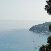 По дороге из Ниццы в Монако :: Елена Смолова