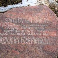 Камень :: Маруся Шитова