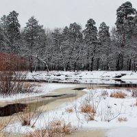 Удивилась снегу талая вода... :: Лесо-Вед (Баранов)