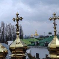 Золотые купола :: Владимир Бровко