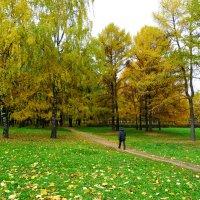 В осенний парк. :: Александр Атаулин