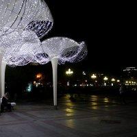 набережная Ялты ночью :: elena manas