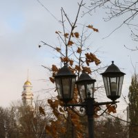 Осенние мотивы :: Юрий Новичков