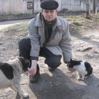 Войну между кошками и собаками останавливает доброта человека :: Алекс Аро Аро