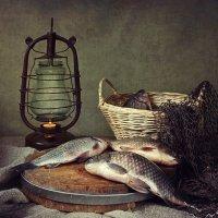 Из серии Рыбный день :: Ирина Приходько