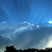 Синее небо, лучистое. :: Маргарита ( Марта ) Дрожжина