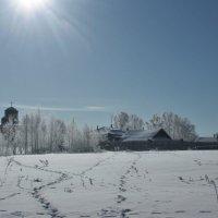 Мартовское солнце :: Николай Масляев