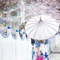 весна :: Ольга Цой