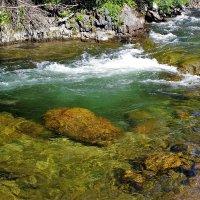 Вода горной речки :: Сергей Чиняев