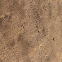 Пейзажи на песке :: Надежда Кунилова