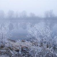 Последний иней- прощальный взмах Зимы :: Елена Пономарева