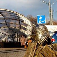 крот вырыл подземный переход... :: Александр Прокудин