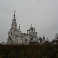 Козья гора. Церковь Покрова Пресвятой Богородицы :: Елена Павлова (Смолова)