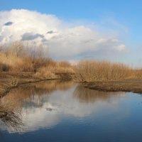 Отразились в речке облака :: Dr. Olver  ( ОлегЪ )