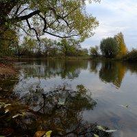 Уж небо осенью дышало... :: Алексей Афанасьев