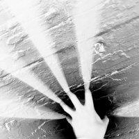 Несущий свет :: Сергей Шаврин