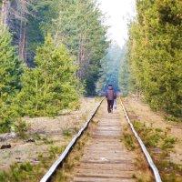 дорога в...... :: александр дмитриев