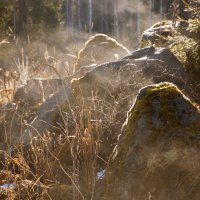 дыхание камней :: liudmila drake