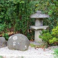 Сад камней :: Вера Щукина