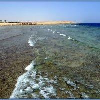 Вспоминая Красное море.. :: Андрей Заломленков