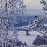 Высоко сижу, далеко гляжу... :: Альмира Юсупова