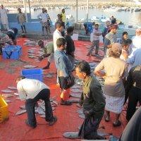 Оман.Рыбный базар-2 :: Елена Байдакова