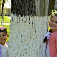 две сестрички :: Ксения Магина