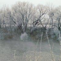 Зимний туман :: sorovey Sol