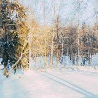 Зимнее настроение :: Алёнка Шапран