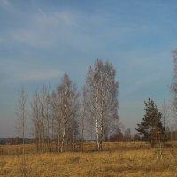 Скоро лето :: Рома Григорьев
