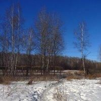 Еще в полях белеет снег :: Андрей Лукьянов