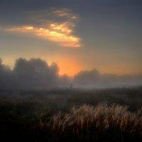 Перед рассветом...2 :: Андрей Войцехов